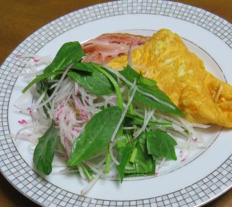 サラダ用ホウレンソウ朝の生野菜サラダ