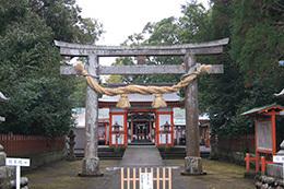 20180122揖宿神社クスノキ⑨