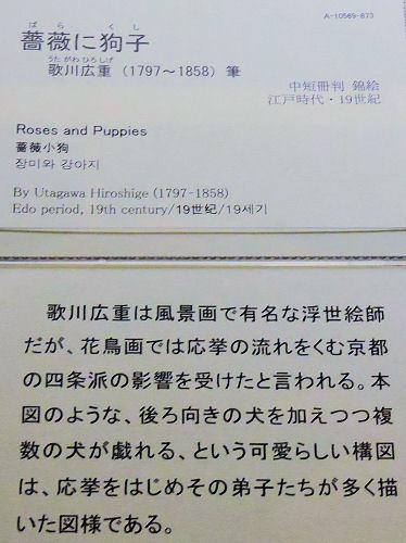 180104tohaku16.jpg