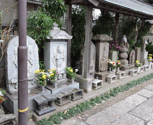 180114kichijou21.jpg