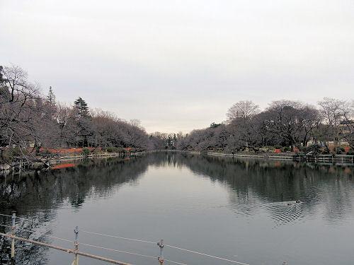 180114kichijou48.jpg
