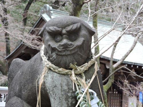 180114kichijou56.jpg