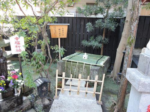 180222yotsuya17.jpg