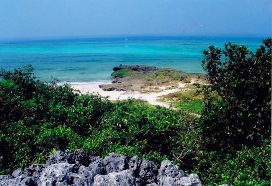 ②エメラルドのサンゴ礁 (550x377)