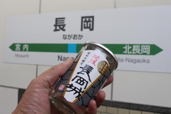 ⑨「長岡城」呑み鉄