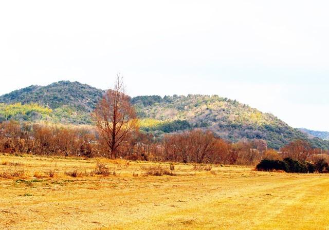 枯野と冬山