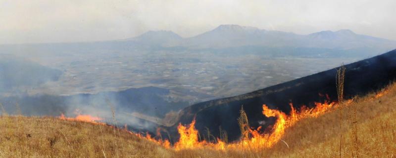 阿蘇の野焼き風景と涅槃像
