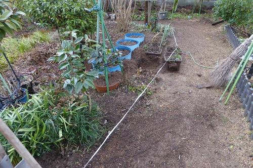 庭の片づけ