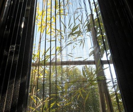 29窓際の竹