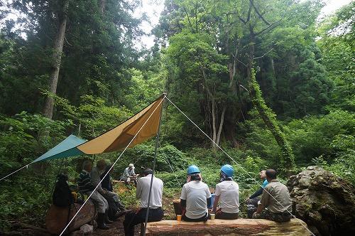 s-天然スギ巨木の森③