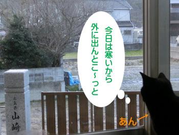 2018-02_01_08.jpg