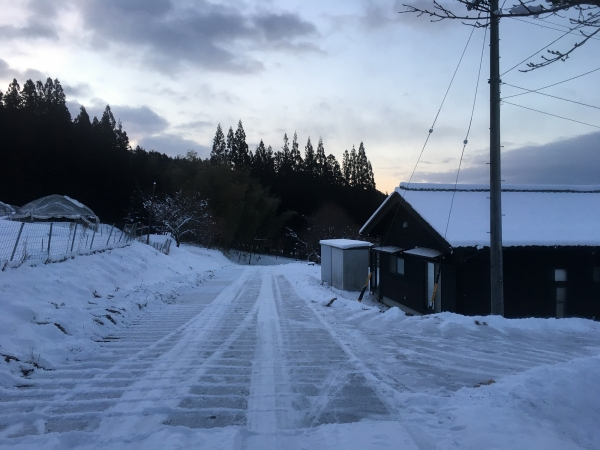 180125-早朝雪かき