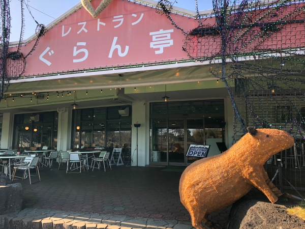 018伊豆グランパル公園batch_IMG_7801