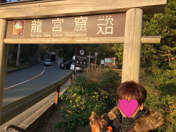 079下田竜宮窟batch_IMG_7866
