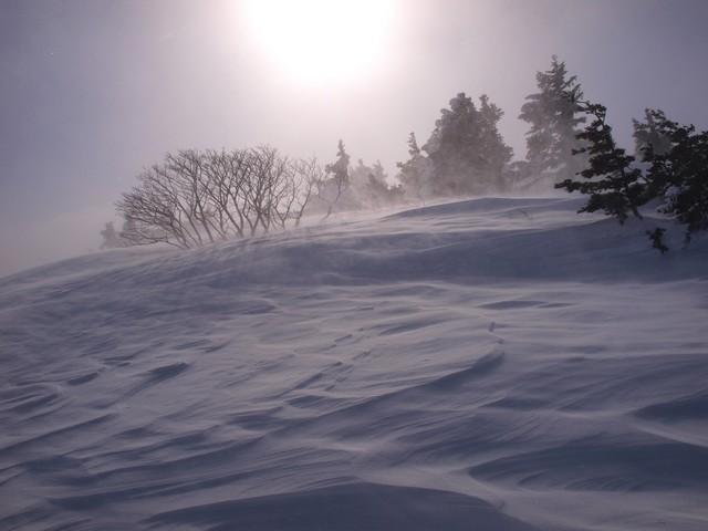 s強風と日射2