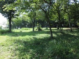 山本山城/09二の丸.JPG