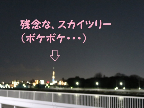 IMG_a2868-2.jpg