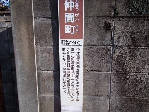DSCN0115.jpg