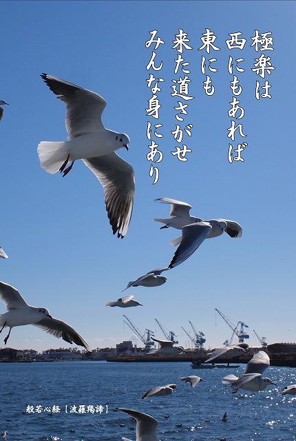 5001写経会 絵葉書作成ファイル 53
