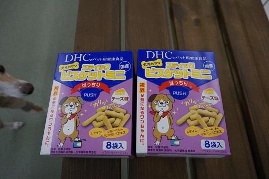 DSC02927.jpg