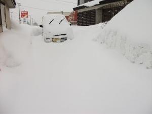 180219雪に埋もれる