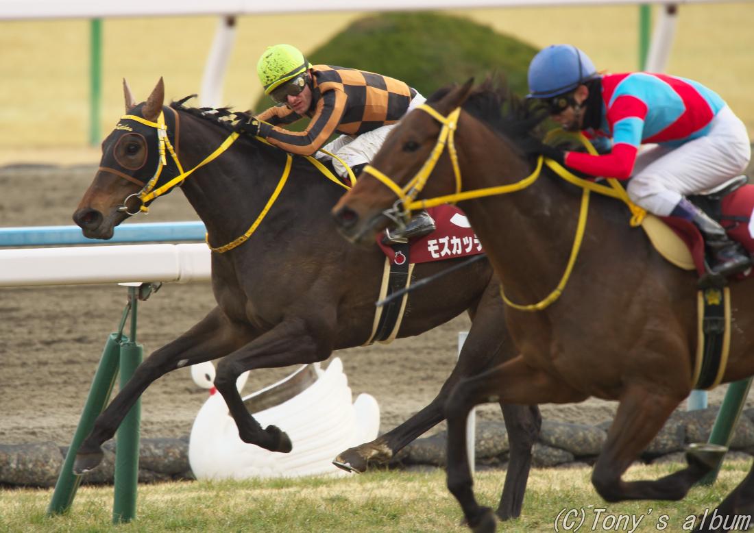 記念 京都 京都記念、人気馬に危険な歴史。むしろ3番、6番人気が好走している|競馬|集英社のスポーツ総合雑誌 スポルティーバ