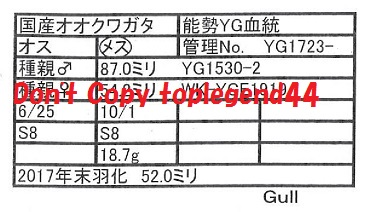 Gulll1723-22証明113