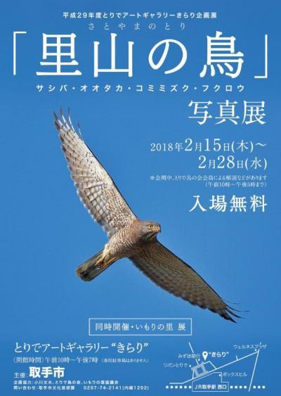 sashiba_posuta.jpg