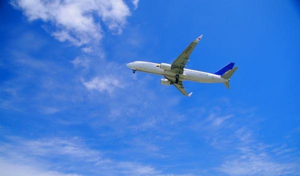 旅行 飛行機