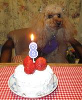 8歳祝いケーキでティータイムを
