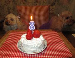 8歳祝いケーキでティータイムを1