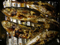 晩御飯にお魚焼きました