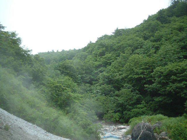 2003_0706AI.jpg