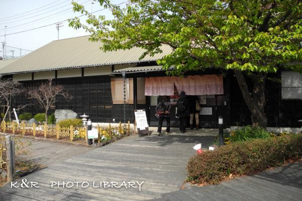 2017年3月5日文化公園雛の館1