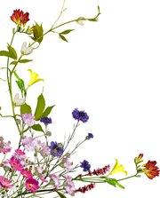 flower0009.jpg