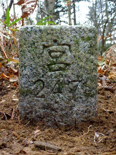 sakanoiri11.jpg