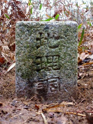 sakanoiri12.jpg