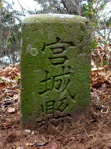 sakanoiri_m3.jpg