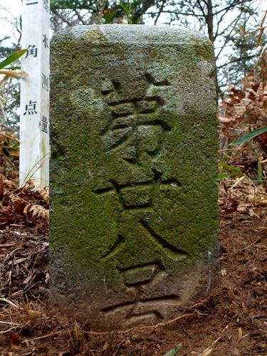 sakanoiri_m6.jpg