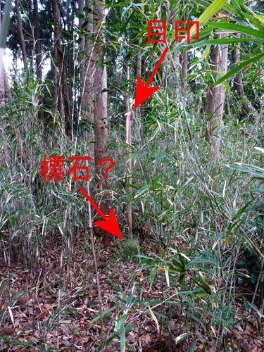 takamatsu_m9.jpg