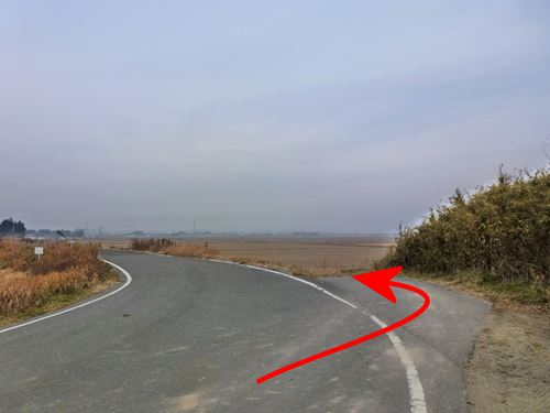 wagouyama3.jpg