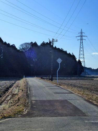 zennouji3.jpg