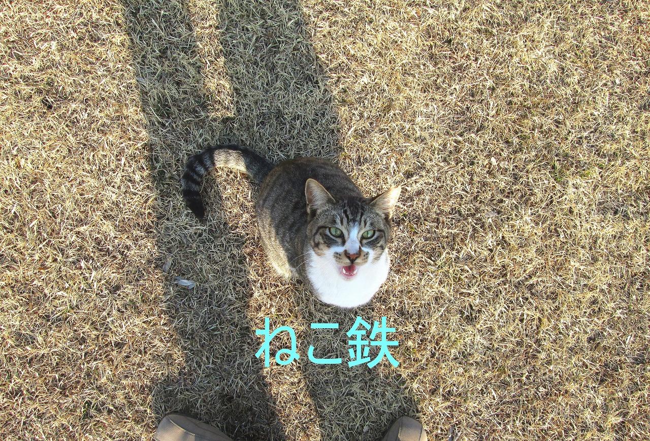 IMG_3364to_1.jpg