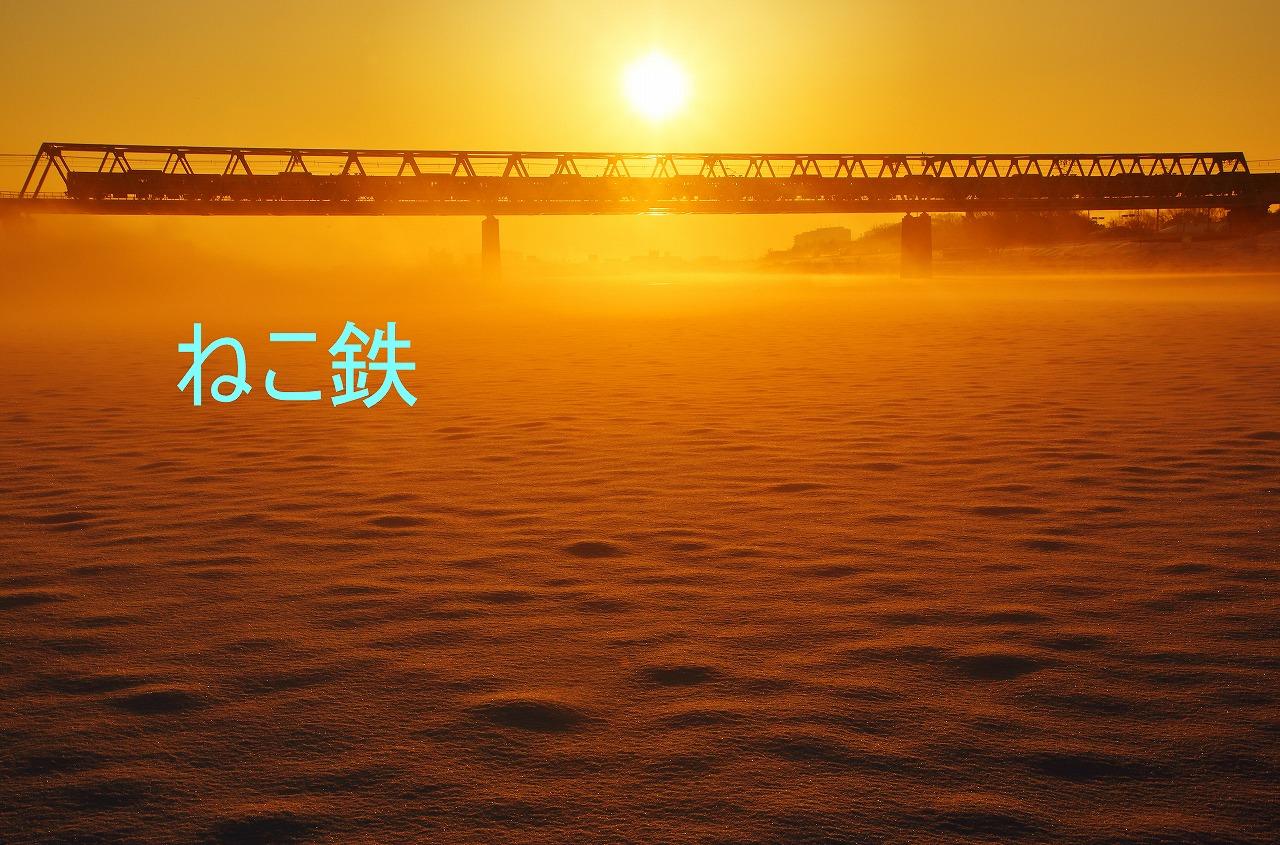 IMG_5959c6600_1.jpg