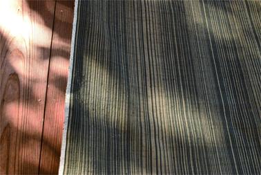 119-2.jpg