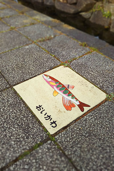 元渕江公園007