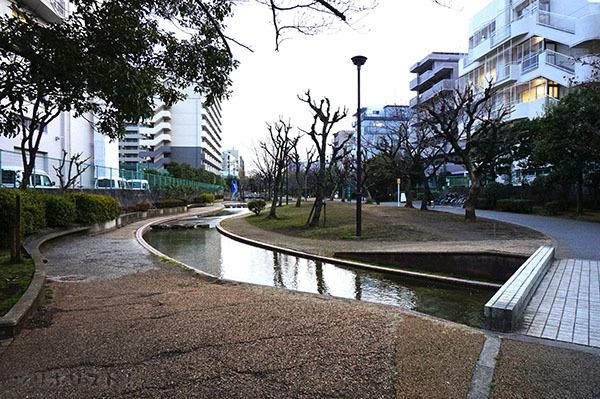 墨田公園019