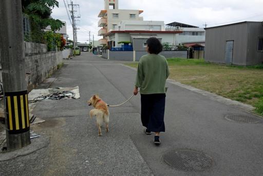 散歩-a DSC00205