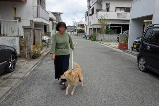 散歩-b DSC00206