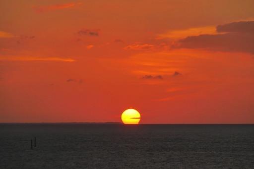 朝夕陽1-3,18-07 P1170135